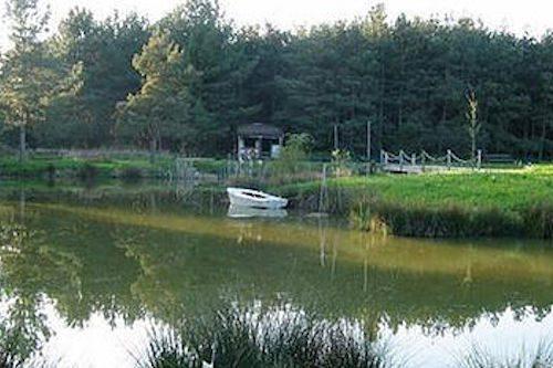Pansill Accommodation Lake